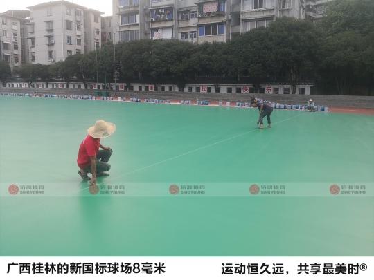 广西桂林新国标球场8毫米